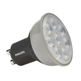 Professional LED Lamps