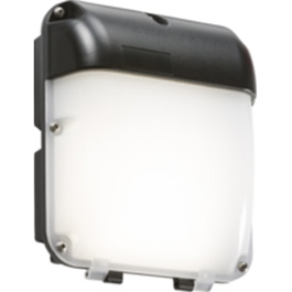 LED Amenity Security Lighting