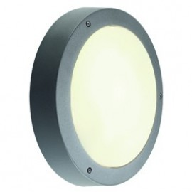Dragan Outdoor Ceiling & Wall Light Silver Grey Or Anthacite 230404