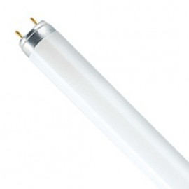 T8 G13 18W Warm White Fluorescent Tube Pack Of 10 T818FTW