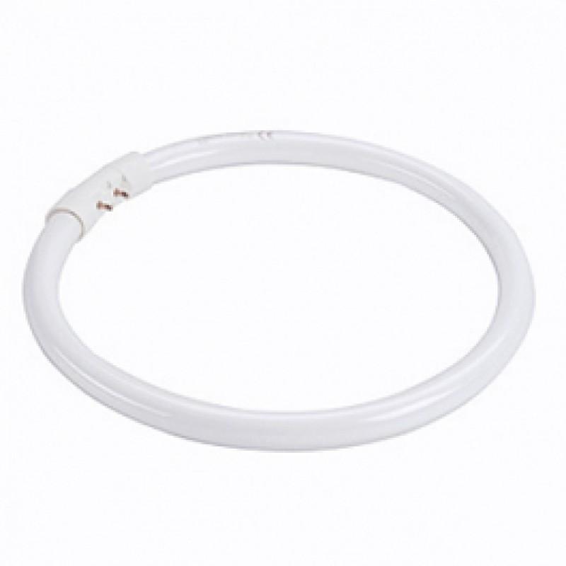 T5 2GX13 40W Warm White Fluorescent Ring T540FRW