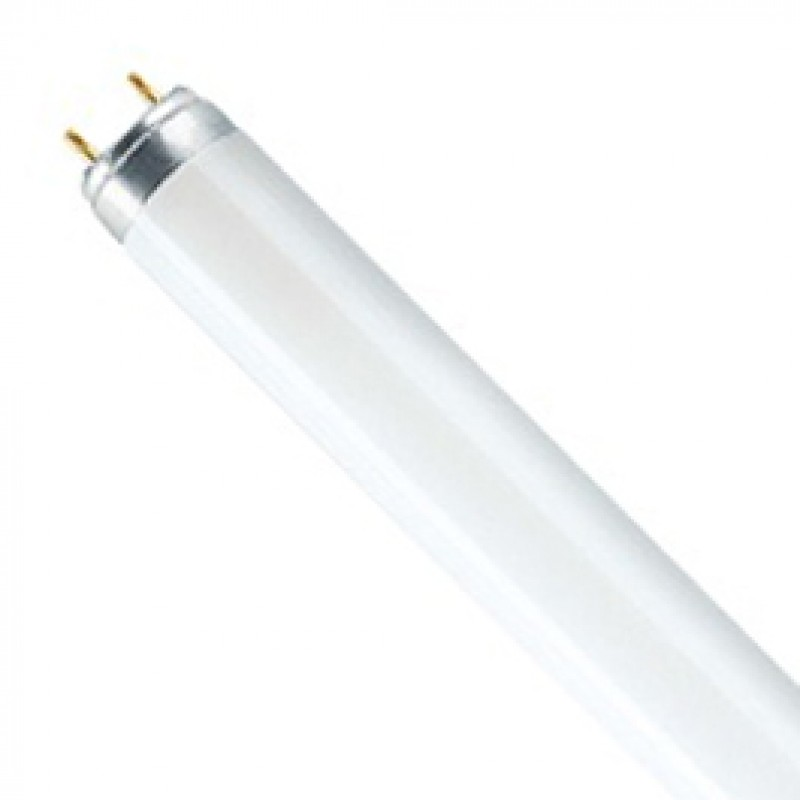 T8 G13 70W Warm White Fluorescent Tube Pack Of 10 T870FTW